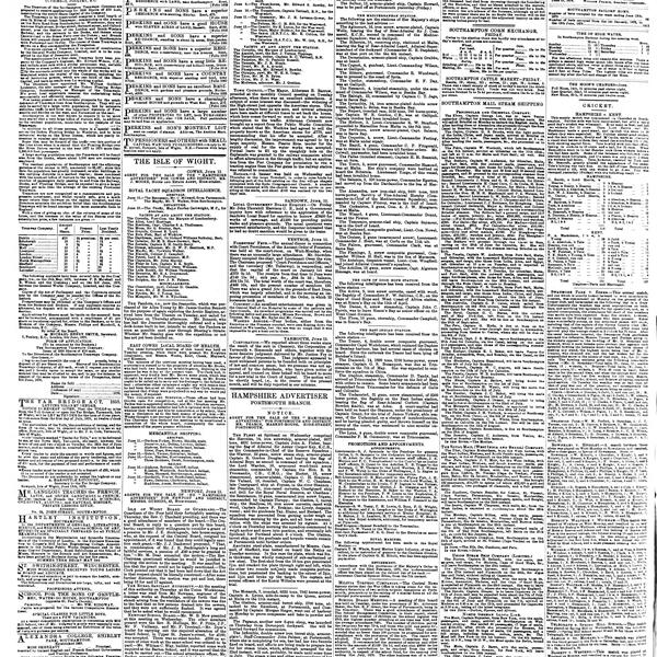 The Hampshire Advertiser, 1878-06-15, page 8